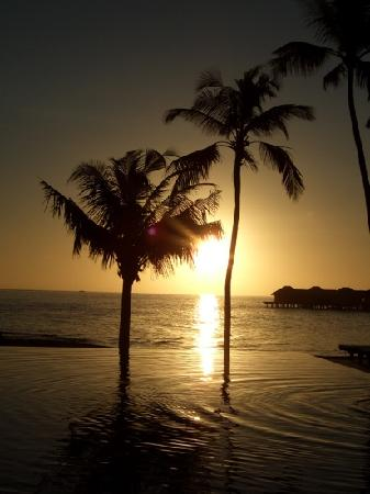 Bodu Huraa Maldives: piscina