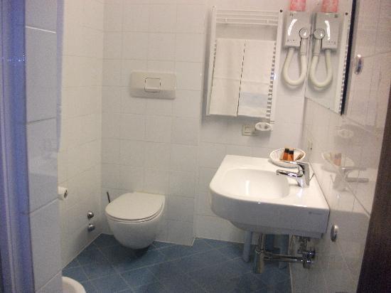 Hotel Castelli : Shower, no bath