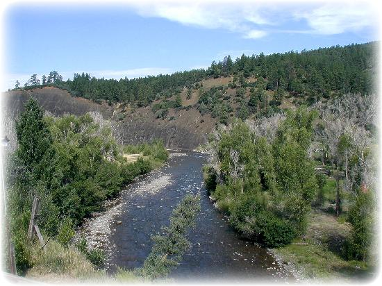Elk Meadows River Resort : San Juan River