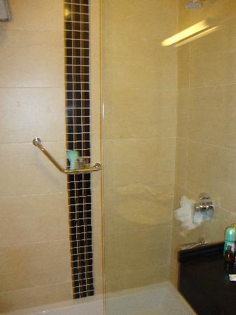 Hotel Misk : Shower