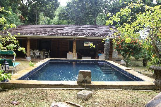 Cote Sud: la piscina davanti a villa aranci