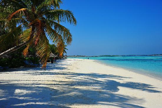 Four Seasons Resort Maldives at Kuda Huraa: The beach