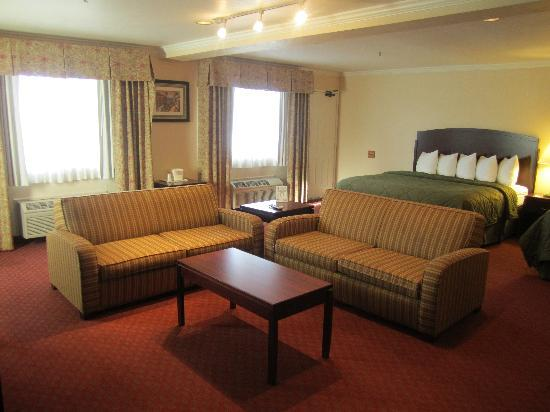 Quality Inn Wine Country : Sleeper Couches