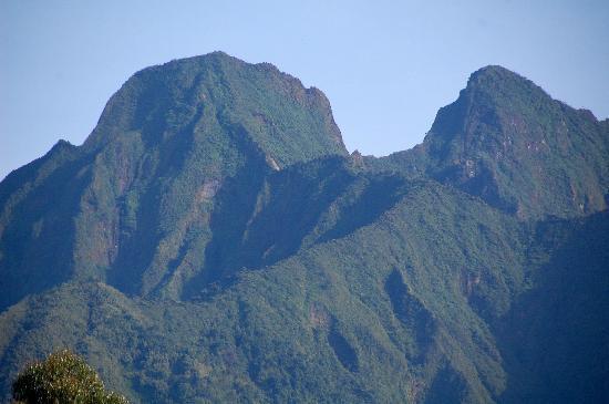 Kinigi Guesthouse: Spectacular volcanoes.