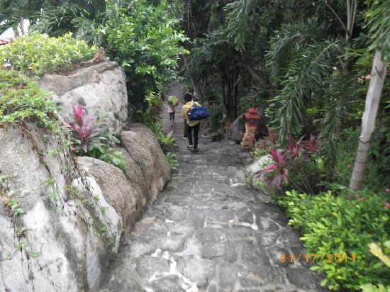 Sea Breeze Resort: path leading to bungalows