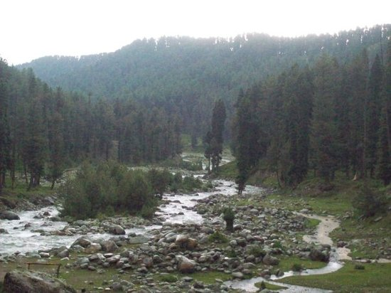 Srinagar, India: YOUSMARG