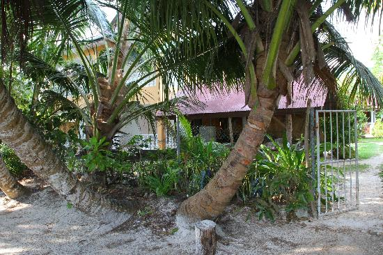 Rosemary's Guesthouse: the new building and the beach hut