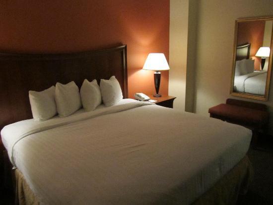 AmericInn Hotel & Suites Indianapolis: room