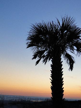Holiday Inn Express Orange Beach: sunset on the beach