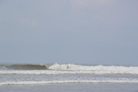 Manoas: surfer in Dominical