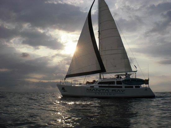 Manta Ray Sailing