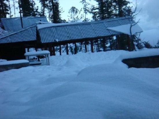 Tethys Ski Resort Narkanda: snow