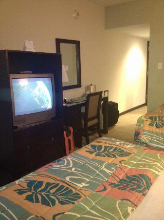 San Miguel Plaza Hotel: tv