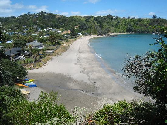 Waiheke Island, New Zealand: Palm Beach Springtime Nov 2010