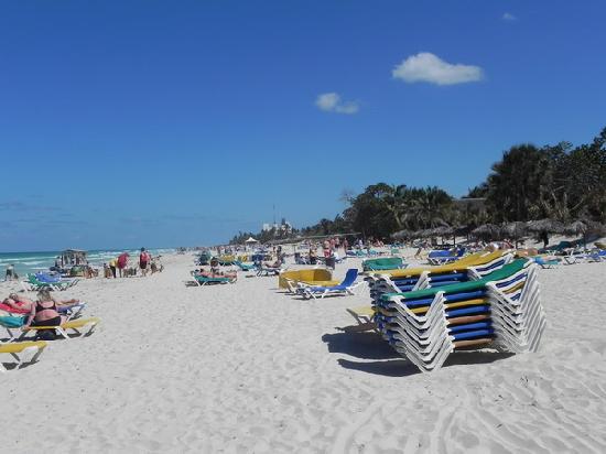 BelleVue Palma Real: Palma Real Beach