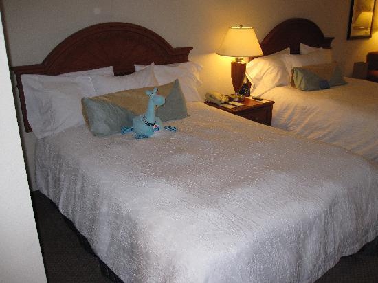 Hilton Garden Inn Ontario / Rancho Cucamonga : 2 Queens
