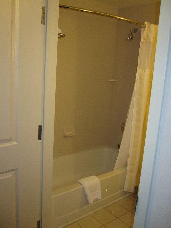 Hilton Garden Inn Ontario / Rancho Cucamonga : Shower