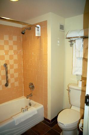 Loews Royal Pacific Resort at Universal Orlando: Concierge room - tub/toilet area