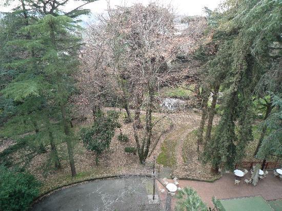 Hotel Villa Aricia : View of the park