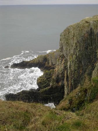 Cwm Connell Coastal Cottages: coastal path