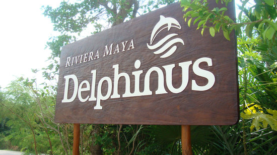 Delphinus Punta Cancun: Outside (Only place to take photos)