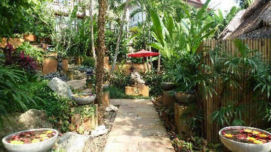 Rocky's Boutique Resort: le jardin