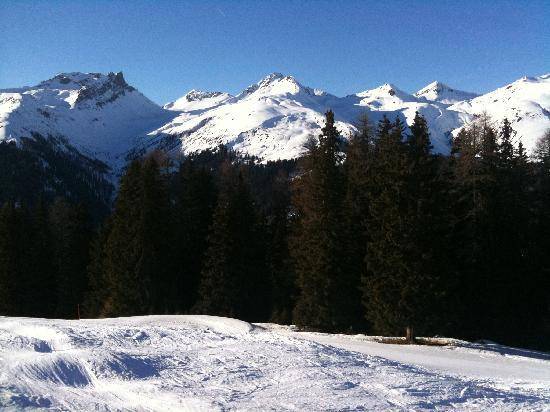 Sunstar Alpine Familienhotel Davos: Skigebiet Rinerhorn