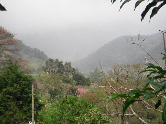 写真Casa Pedro枚