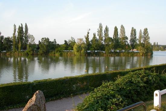 Logis Hôtel des Lacs : la vue du restaurent