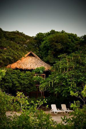 Hotel Playa Scondida: Desde el muelle