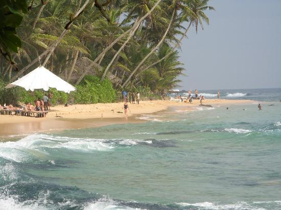 Sri Gemunu Beach Resort: seeview
