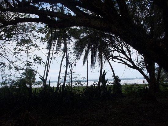 Camping Tayrona: Vista desde el camping de Aviatur