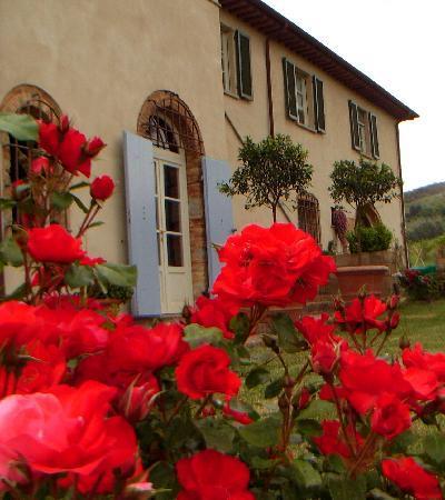 Santa Luce, Italy: ESTERNI E GIARDINO