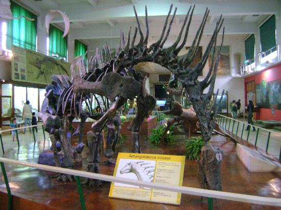 Museo Argentino de Ciencias Naturales Bernardino Rivadavia: 3