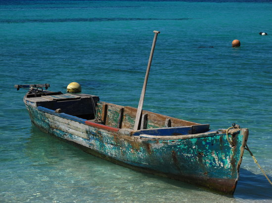 Bay Islands Adventures : Island Boat