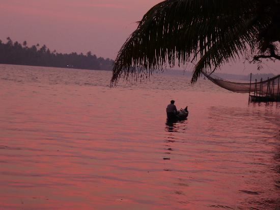 Vedic Village Resorts : view from the hammock