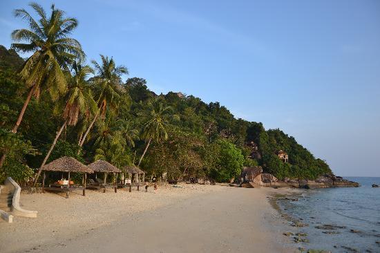 Japamala Resort by Samadhi : Beach