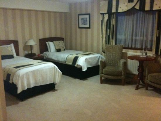 Malone Lodge Hotel & Apartments: twin room