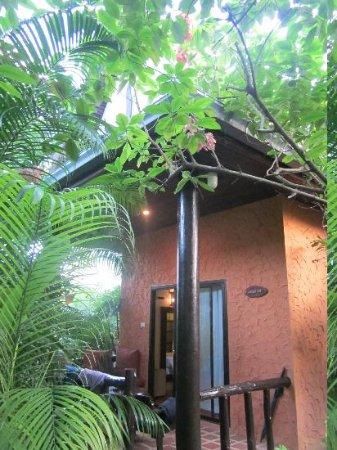 Eden Bungalows : Terrasse et entrée bungalow