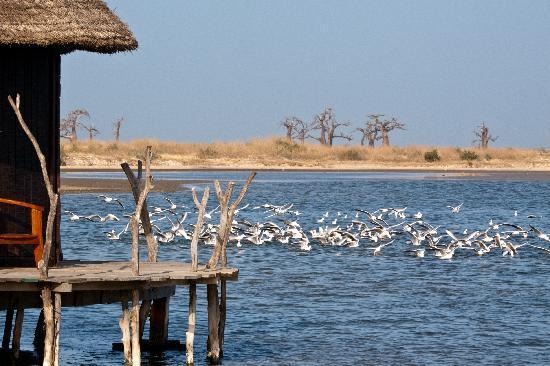 Lodge des Collines de Niassam: Lagune hut