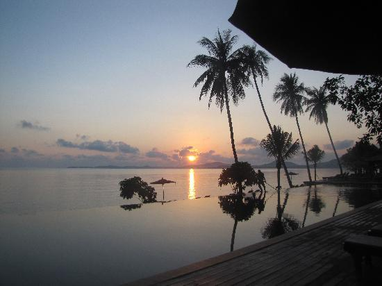 Saree Samui: Pool area at sunrise