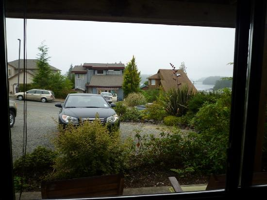 Sand Dollar Guest House: view from the window