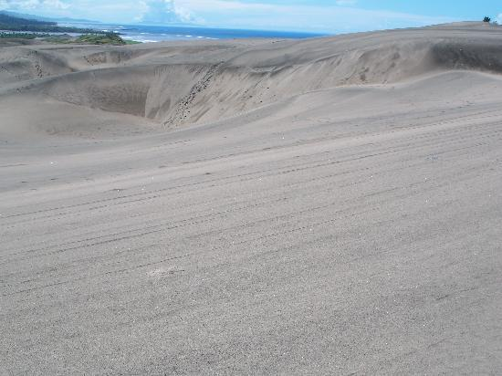 Sigatoka Sand Dunes National Park: The viwe from the top