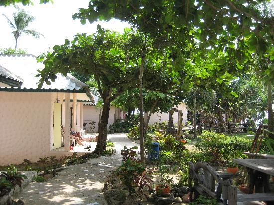 Lanta Palace Resort & Beach Club: le resort avec jardin vert partout autour