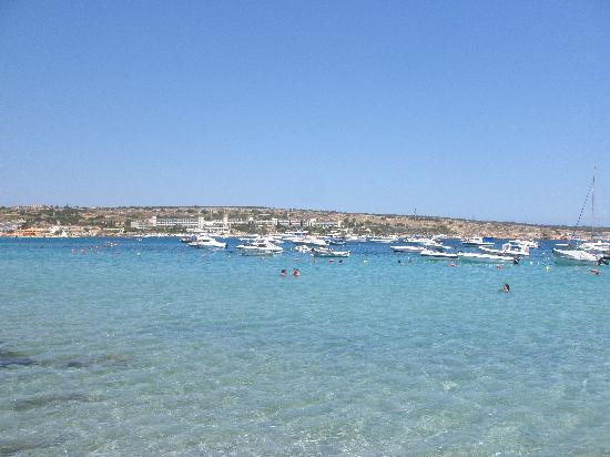 Mellieha, Malta: Ghadira bay