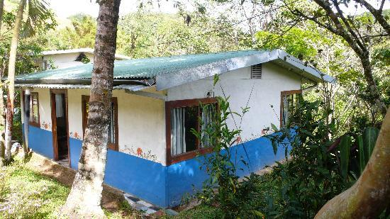 Arilapa Bed & Breakfast: Lovely cabin