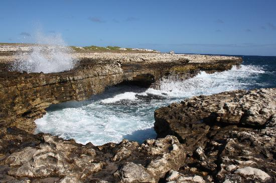 Image result for Devil's Bridge antigua