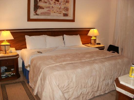 Mayan Palace Puerto Vallarta : Bedroom
