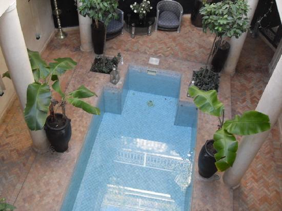 Riad O: La piscine