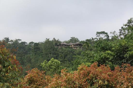 Payangan, Indonezja: View of the villa